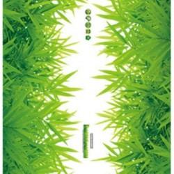 Bambusz falmatrica